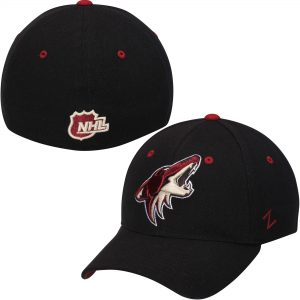 Arizona Coyotes Black Breakaway Flex Hat